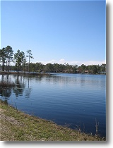 Boiling Spring Lakes, NC Real Estate Guide